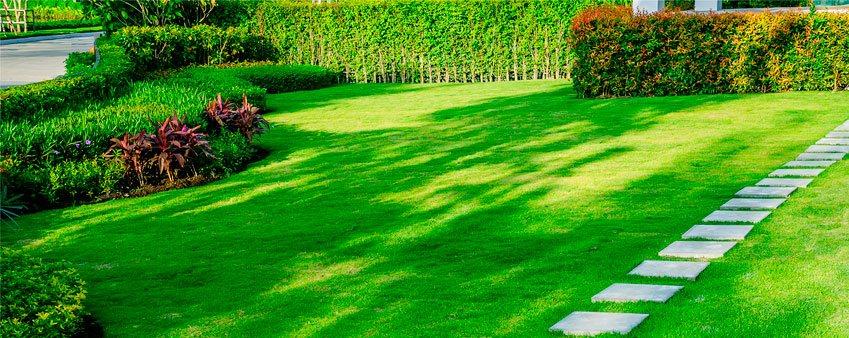 jardineria-para-empresas-y-residenciales